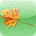 Tree Identifier